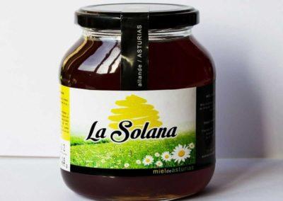 LOGO, TARJETAS Y PACKAGING MIEL LA SOLANA